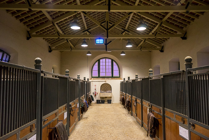 Portuguese School of Equestrian Art