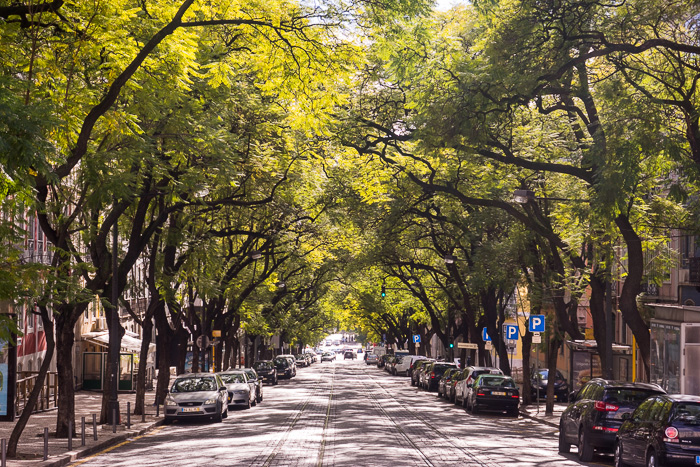 Lapa Lisbon